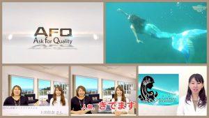 【日本初の人魚姫!『私、一生 人魚やります!』】