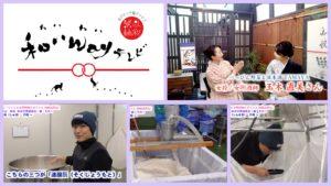 【きょーちゃん&女唎酒師たまちゃん 酒蔵訪問記 第一弾】<第82回>