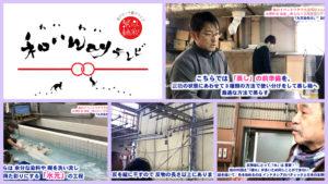 【夢雛 創作者 友禅作家 南進一郎と友禅散策ツアー《その2》】<第111回>