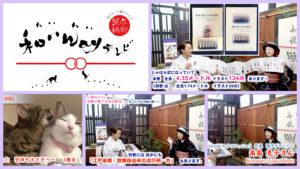 【自粛期間に生まれた「着物で紡ぐ日本の歴史」完成・公開!】<第119回>